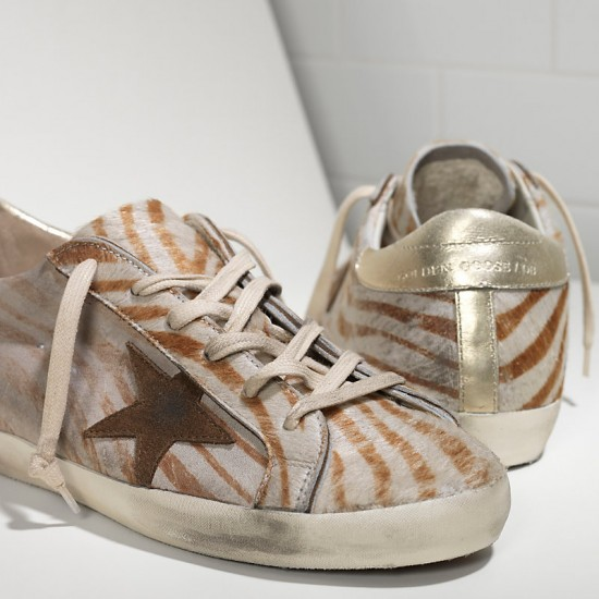 Women Golden Goose superstar in gold zebra sneaker